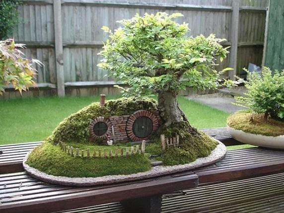 نباتات واشجار خلابه لم تشاهد مثلها سابقا Nabatat.1